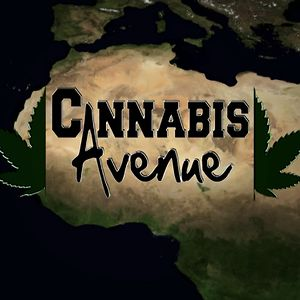 Profile picture for Cannabis Avenue