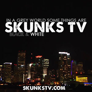 Profile picture for SkunksTV