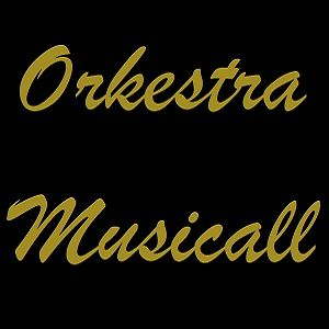 Profile picture for orkestramusicall