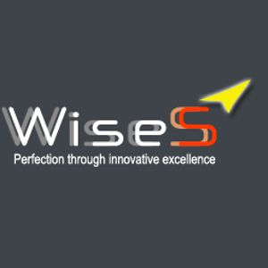 Profile picture for Wise Sooryagni Info Pvt Ltd