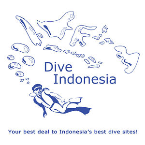 Profile picture for Dive Indonesia
