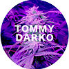 Tommy Darko
