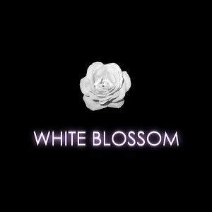Profile picture for White Blossom