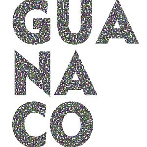Profile picture for GUANACO FILM
