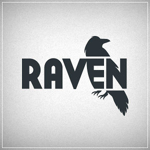 Profile picture for Raven Tools