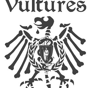 Profile picture for Vultures