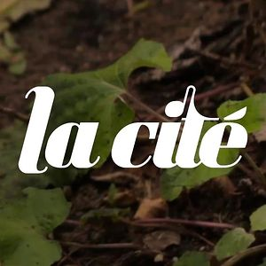Profile picture for La Cit&eacute;