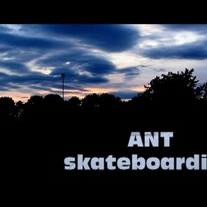 Profile picture for ANTskateboarding
