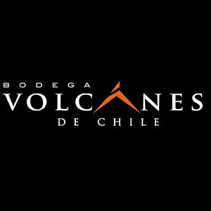 Profile picture for Bodega Volcanes