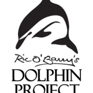 Profile picture for Dolphin Project