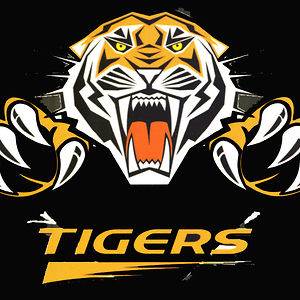 Profile picture for Ridgefield Tiger TV