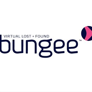Profile picture for Bungee Virtual Lost and Found