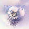 TinyRoom