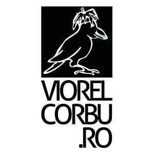 Profile picture for Viorel Corbu