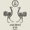 Ancient Eye Media