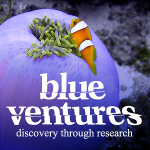 Profile picture for Blue Ventures