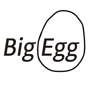 Profile picture for Big Egg Films