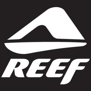 Profile picture for Reef Brazil