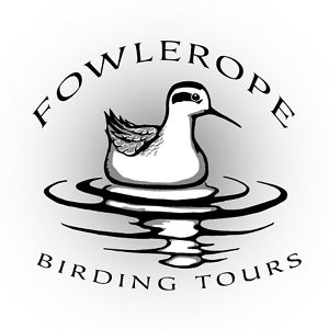 Profile picture for Fowlerope Birding