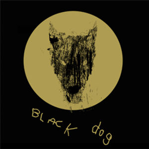 Profile picture for Black Dog Films