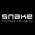 multimedia web agency SNAKE