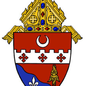 Profile picture for Diocese of Fort Wayne-South Bend