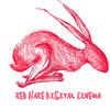 Red Hare Digital Cinema