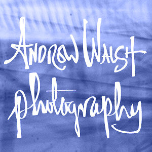 Profile picture for Andrew Walsh Photography