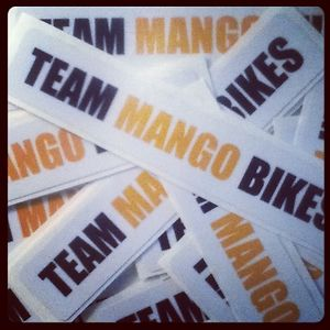 Profile picture for TEAM MANGO BIKES