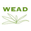 WEAD Artists