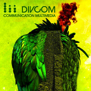 Profile picture for divcom