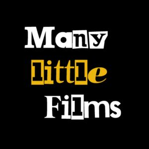 Profile picture for Many Little Films