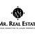 Mr. Real Estate