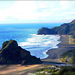Piha Sea Verge