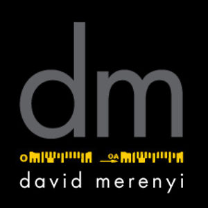 Profile picture for david merenyi
