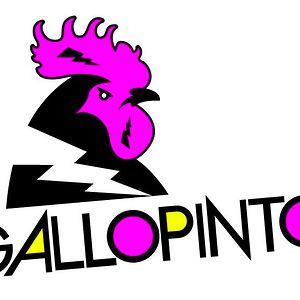 Profile picture for GalloPinto TV