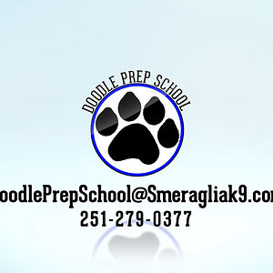 Profile picture for Doodle Prep School