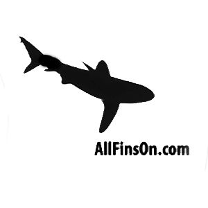 Profile picture for All Fins On LLC