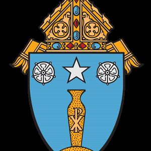 Profile picture for Diocese Of Beaumont