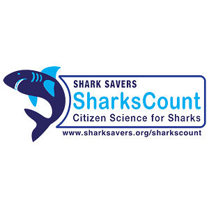 Profile picture for SharksCount