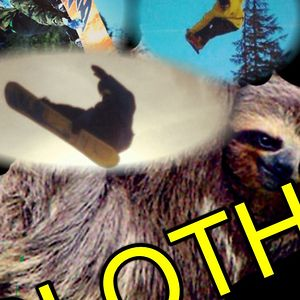 Profile picture for sloth