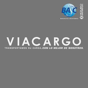 Profile picture for VIACARGO