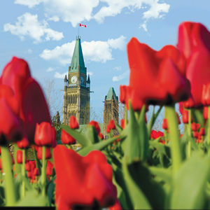 Profile picture for Ottawa Tourism