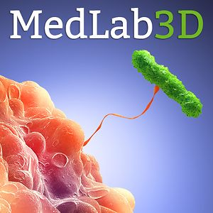 Profile picture for Medlab3D.com