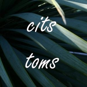 Profile picture for Cits Toms