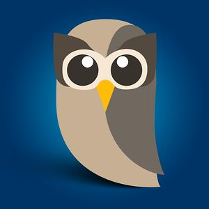 Profile picture for HootSuite