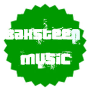 Profile picture for Baksteen Music