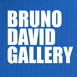 Profile picture for Bruno David Gallery