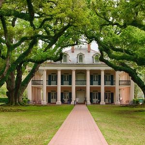 Profile picture for Oak Alley Plantation