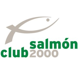 Profile picture for Club Salmón 2000